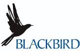 Blackbird Sp. z o.o.